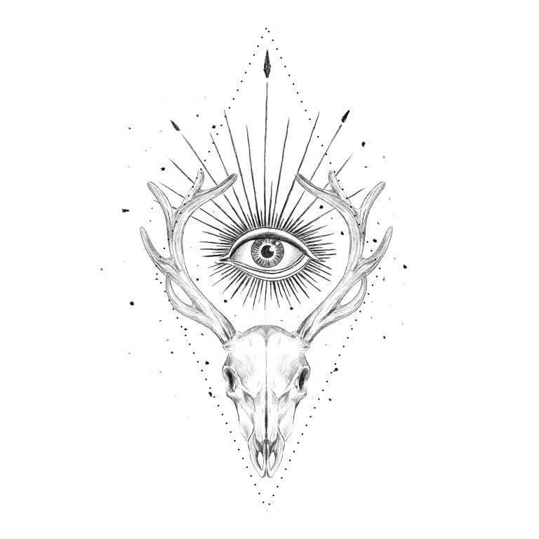 Ciervo calavera ojo